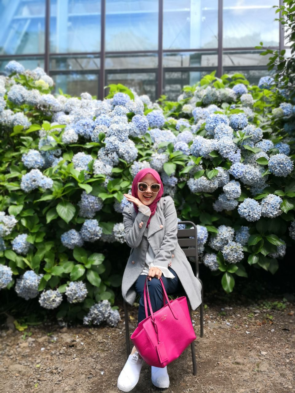 Photo with Hydrangea flower in Jeju's summer